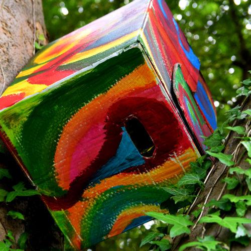 Karton im Baum 1
